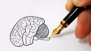 Pisanje rukom aktivira područja u mozgu koji nam pomažu da učimo brže i bolje.